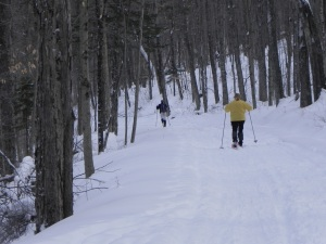 X-C Skiers on their way into Great Camp Santanoni