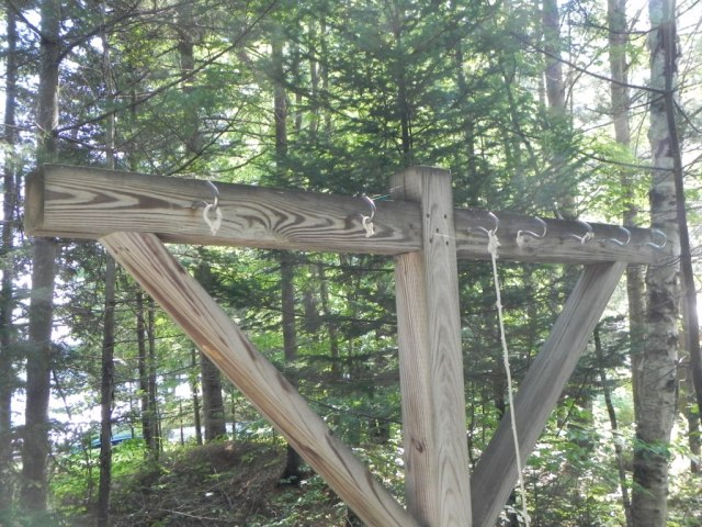 Our clothesline denuded of line, apparently by red squirrels.